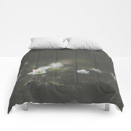 Untouched I Comforters