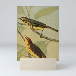 Vintage Print - Prairie Warbler & Yellow Red-Poll Mini Art Print