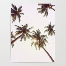 Palm Trees And Pink Sky Poster