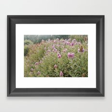 Late Summer Flowers Framed Art Print