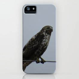 Harlan Hawk iPhone Case