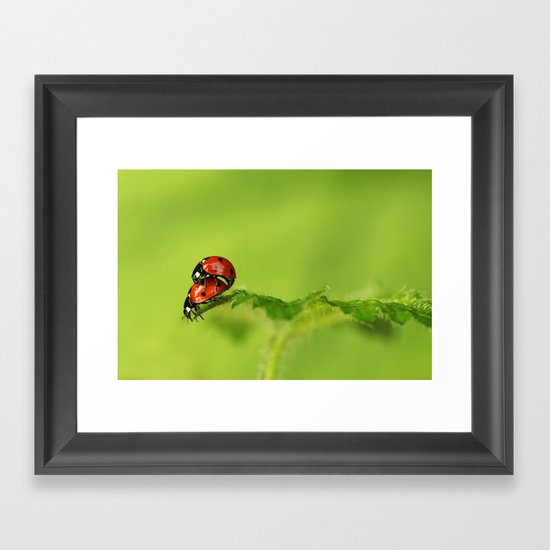 Ladybirds in spring Framed Art Print