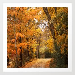 Autumn Gate Art Print