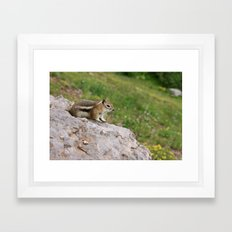 Just Chillin' Framed Art Print
