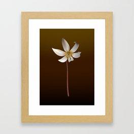 Larisa Framed Art Print