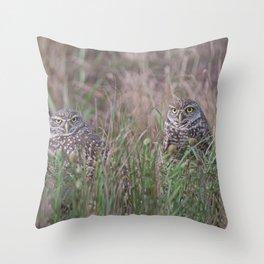 Burrowing Owl pair Throw Pillow