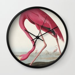 Pink Flamingo from Birds of America (1827) by John James Audubon (1785 - 1851 ), etched by Robert Havell (1793 - 1878) Wall Clock