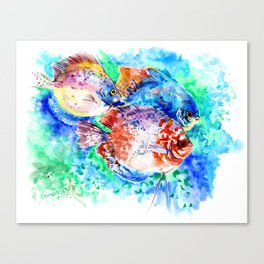 Underwater Scene Artwork, Discus Fish, Turquoise blue pink aquatic design Canvas Print