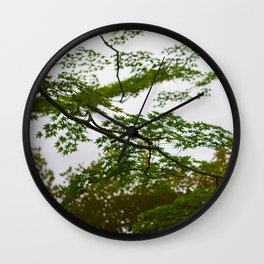 Abstract Japanese Maple Tree - Botanical Wall Art - Greenery in Japan - Water and trees - Travel Photography Wall Clock