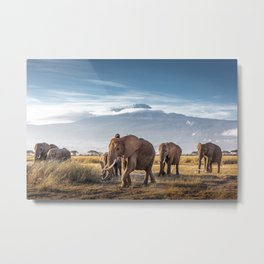 Herd of large african elephants walking in front of Mount Kilimanjaro in Amboseli Kenya Africa Metal Print