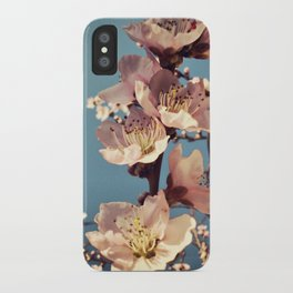 fulgor iPhone Case