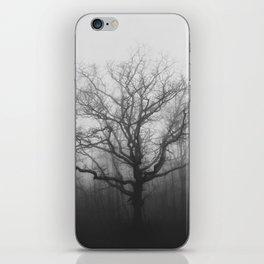 Shenandoah Park at the change of Seasons iPhone Skin