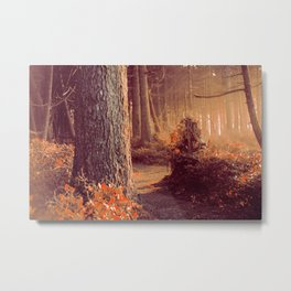 The Forest Whispers Autumn Metal Print