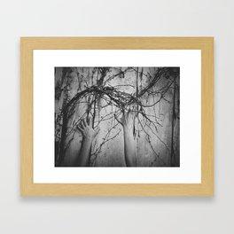 reaching, growing Framed Art Print