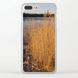 Näsijärvi freezing Clear iPhone Case