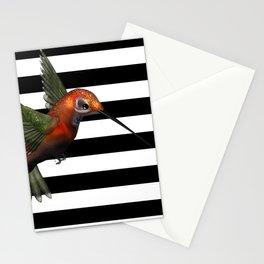 Colorful Hummingbird & Horizontal Stripes Stationery Cards