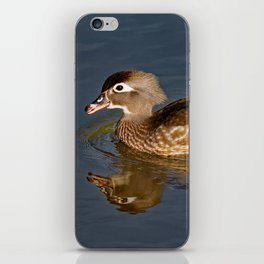Female Wood Duck Calling iPhone Skin