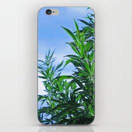 CannaBliss iPhone Skin