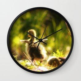 Ready to fly Wall Clock
