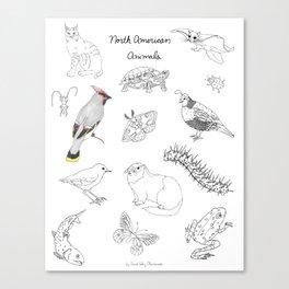Animals of North America  Canvas Print