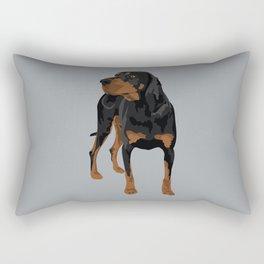 Aston Rectangular Pillow