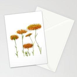 Calendula Stationery Cards