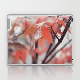 Maple Leaves After Rain Laptop & iPad Skin