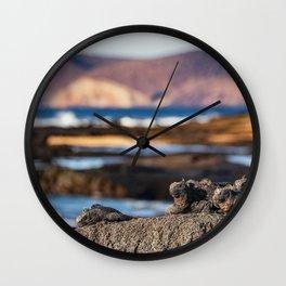 Galapagos marine iguanas sleeping on coast beach Wall Clock