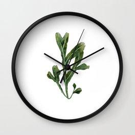 Green Seaweed Watercolor No. 1 Wall Clock
