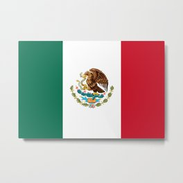 Mexican flag of Mexico Metal Print