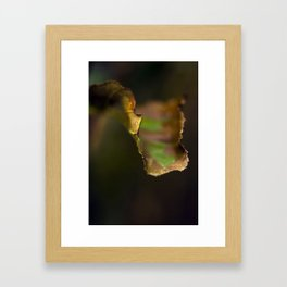 LEAVES OFSOUTH Framed Art Print