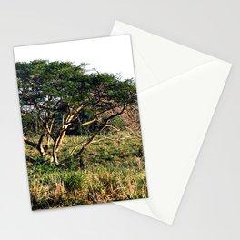 "Near ""3 Palmas"" Rincon Stationery Cards"