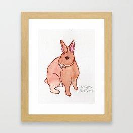 Brown Rabbit Framed Art Print