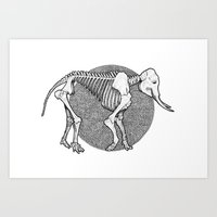 Elephantidae Art Print