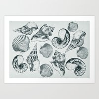 shells Art Prints featuring shells by sustici