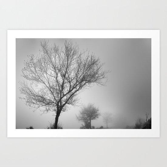 Three tree silhouettes in the rain Art Print