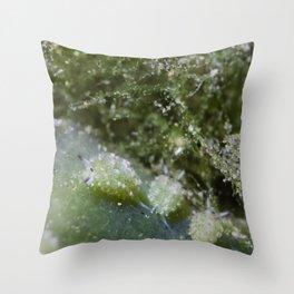 Shaun the sheep nudibranch herd Throw Pillow