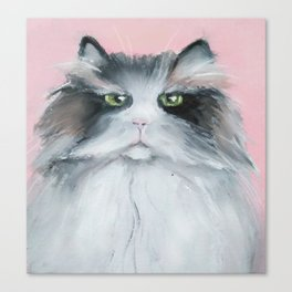 Cat is not impressed Canvas Print