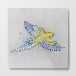 Parrot -- Blue & Yellow Metal Print
