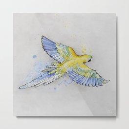 Parrot -- Blue & Yellow Metal Print