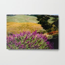 Napa Valley in Autumn Metal Print