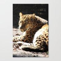 cheetah Canvas Prints featuring Cheetah by Vicky Rosado