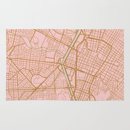 Pink and gold Medellin map, Colombia Rug