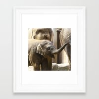 baby elephant Framed Art Prints featuring Baby Elephant by Päivi Vikström