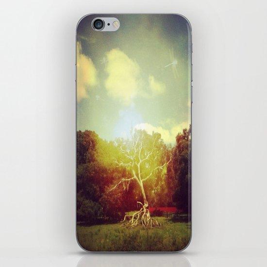 Burning Bush iPhone & iPod Skin