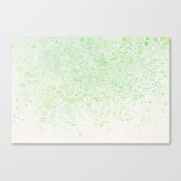 flavor of young leaves Canvas Print