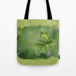 Lady`s mantle is revealing Tote Bag