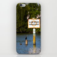 manatee iPhone & iPod Skins featuring Manatee Zone by Roger Wedegis