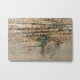 Rustic Wood Ages Gracefully - Beautiful Weathered Wooden Plank - knotty wood turquoise paint Metal Print