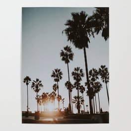 palm trees vi / venice beach, california Poster